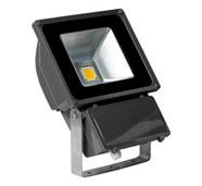 Guangdong buru fabrika,LED argia,15W Hexagon buru sabaia argi 4, 80W-Led-Flood-Light, KARNAR INTERNATIONAL GROUP LTD
