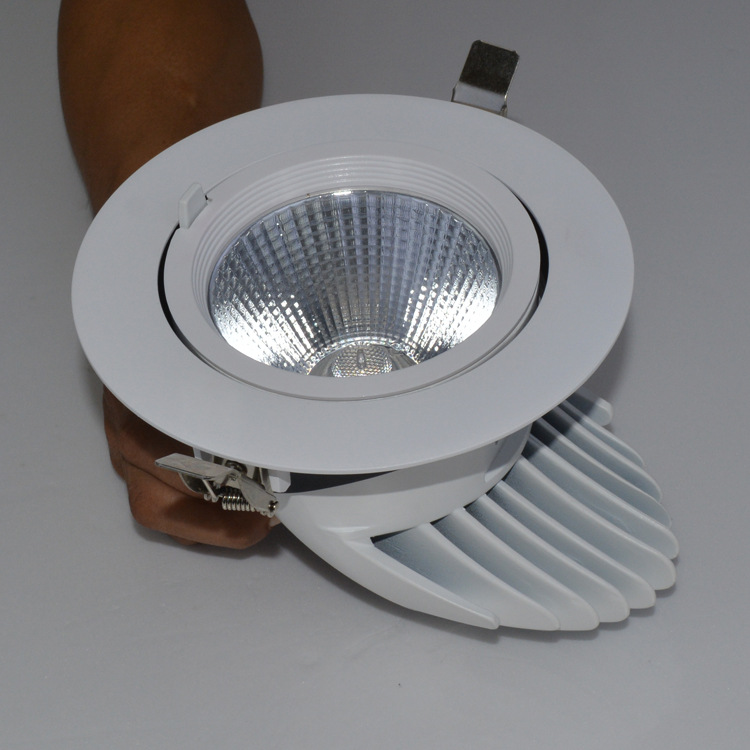 Guangdong buru fabrika,argiztapen buru,15w Elefantearen enborra hustu Led downlight 3, e_2, KARNAR INTERNATIONAL GROUP LTD