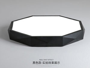 Guangdong buru fabrika,LED proiektua,18W Hexagon buru sabaia argi 2, blank, KARNAR INTERNATIONAL GROUP LTD